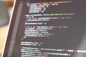 custom wordpress themes for PPC sites